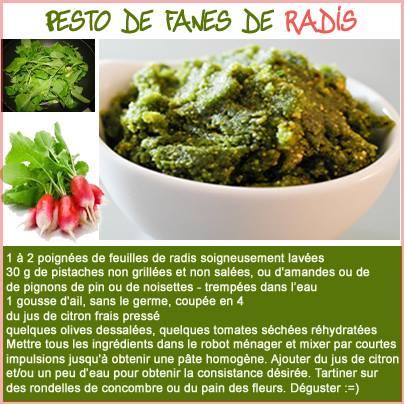 pesto_radis.jpg