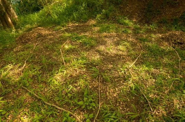 1609_jardiner-au-naturel-septembre_022