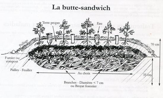 butte sandwich