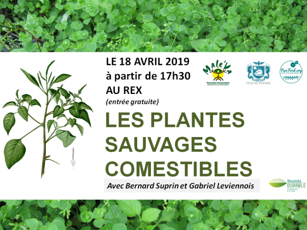 Comm_FB_plantes_sauvages_comestibles2