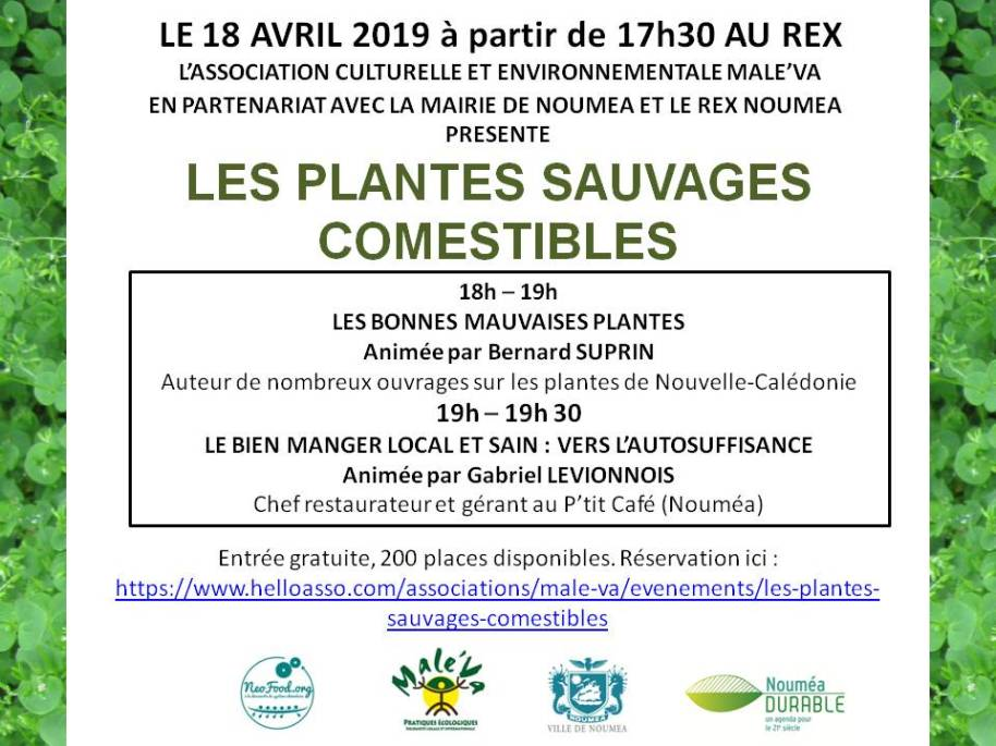 Infos_plantes_sauvages_comestibles