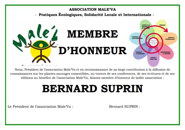 membre bs